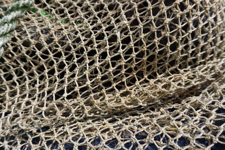 Δίχτυ